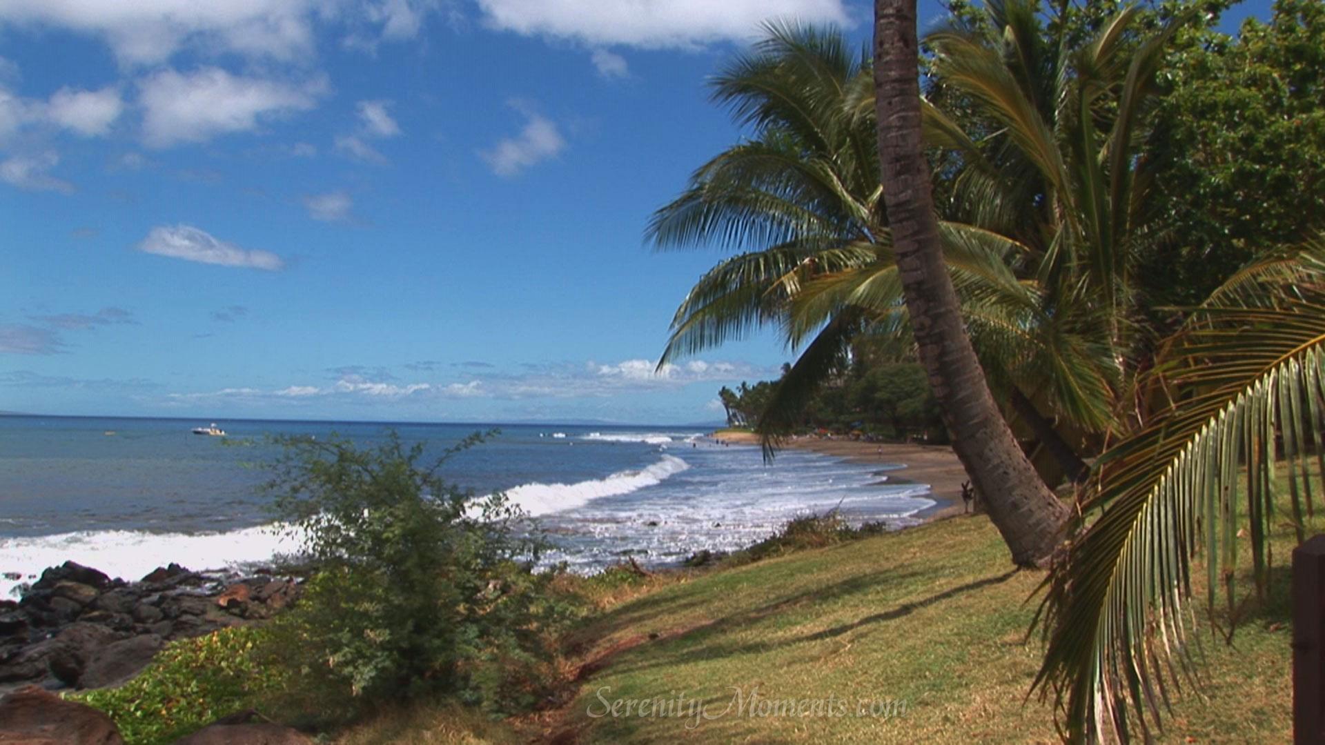 Tropical Island Beach Ambience Sound: Serenity Moments Screensavers, Free Screensavers